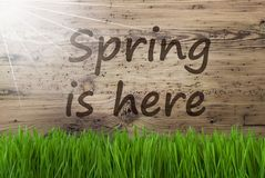 Free Sunny Wooden Background, Gras, Text Spring Is Here Stock Images - 106249784