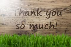 Sunny Wooden Background Gras, text tackar dig så mycket royaltyfri bild