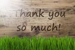 Sunny Wooden Background, Gras, texte vous remercient tellement image libre de droits
