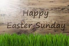 Sunny Wooden Background, Gras, textotent le dimanche de Pâques heureux images stock