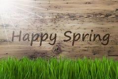 Sunny Wooden Background, Gras, textotent le ressort heureux photos libres de droits