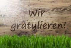 Sunny Wooden Background, Gras, Wir Gratulieren veut dire des félicitations photos libres de droits