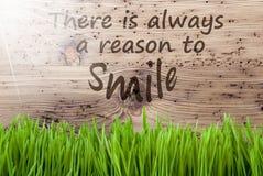 Sunny Wooden Background intelligent, Gras, citent toujours le sourire de raison image libre de droits