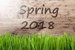 Sunny Wooden Background intelligent, Gras, le printemps 2018 des textes image stock