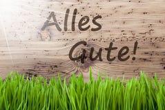 Sunny Wooden Background intelligent, Gras, moyens d'Alles Gute meilleurs voeux photos libres de droits