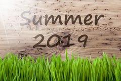Sunny Wooden Background intelligent, herbe, été 2019 des textes image stock