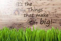 Sunny Wooden Background intelligente, Gras, cita la piccola vita di cose grande Fotografia Stock