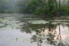 sunraise провинции парка darlington Стоковые Фотографии RF