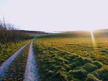 Sunray over green road. A glinting sunray over a peaceful country path stock photo
