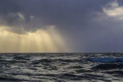 Sunrays επάνω από τον ωκεανό Στοκ φωτογραφία με δικαίωμα ελεύθερης χρήσης