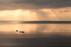 Sunrays через облака над неподвижным озером перед дождем стоковые изображения