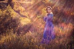 In the sunrays. Beautiful girl in the sunrays stock image