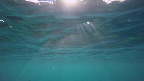 Sunrays break in the water. While snorkeling stock video footage