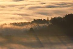 Sunrays and fog Royalty Free Stock Photo