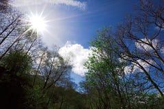 Sunrays i niebo błękitny, chmurny, Zdjęcia Royalty Free