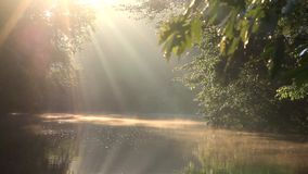 Sunrays on the Musconetcong River stock footage
