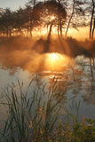 The sunrays pass through the fog. And reflected in the lake Royalty Free Stock Images