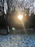 Sunrays And Snow Royalty Free Stock Photography
