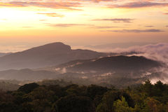Sunrice on Doi Inthanon mountain. Stock Photos
