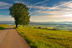 Sunris in Switzerland. Asphal Road to the Small Swiss Town Surrounded by Meadows Stock Photography