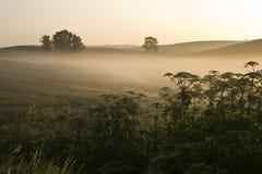 Sunrise. On the fields misty Warmia in Poland Stock Photos