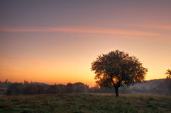 Sunrise Stock Photography