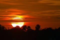 Sunrise. The sun rises in the Florida morning Stock Image