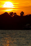 Sunrise. The sun rises in the Florida morning Stock Images