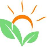 Sunrise. Line art logo design vector illustration