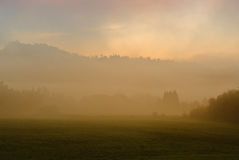 Before sunrise. Foggy morning in a warm tonality royalty free stock photo