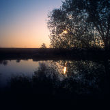 Sunrise. Sunrise over the river with trees silhouettes Royalty Free Stock Photo