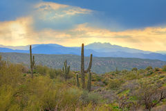 Sunrise. Over Sonoran Desert and Four Peaks. HDR composition stock photos