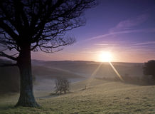 Sunrise. Landscape showing sunrise over hills with tree in foreground Royalty Free Stock Photos