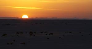 Sunrise 4. Sunrise on the salt lake, central Tunisia Stock Photo