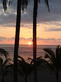 Sunrise. With palmtrees at the beach in Costa Rica Stock Photography