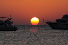 Sunrise. Over Read sea, Egypt Royalty Free Stock Image
