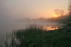 Sunrise. Morning at the lake with fog Stock Photos