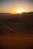 Sunrise above dunes in Namib Desert, Namibia Royalty Free Stock Photography