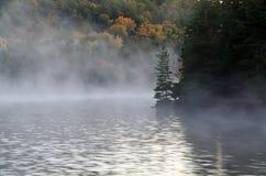 Sunrise above forest lake Stock Image