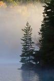 Sunrise above forest lake Royalty Free Stock Image