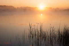 Sunrise above lake Royalty Free Stock Photos