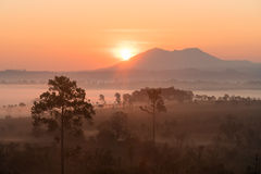 Sunrise above the mountain and misty forest on the morning Stock Photo