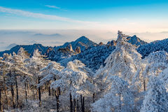 Sunrise above the peaks of Huangshan National park. Royalty Free Stock Images