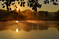 Sunrise above the pond Royalty Free Stock Photos