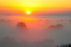 Sunrise above the tree in the clouds Stock Images