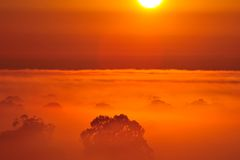 Sunrise above the tree in the clouds Stock Photos