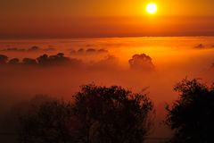 Sunrise above the tree in the clouds Royalty Free Stock Image