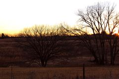 Sunrise across the pastures making bird hunting its best Royalty Free Stock Photo