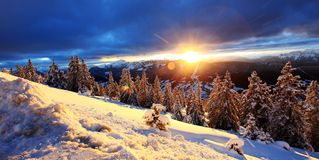 Sunrise at Alps. Sunrise Alps France  dramatic sky winter forest rays of sun Stock Photos