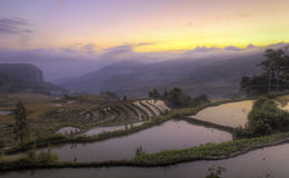 Sunrise on the Ancient Terraces Royalty Free Stock Photography